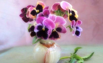 цветы, натюрморт, ваза, букет
